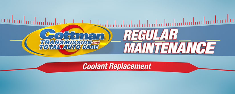 automobile coolant changing and replacement