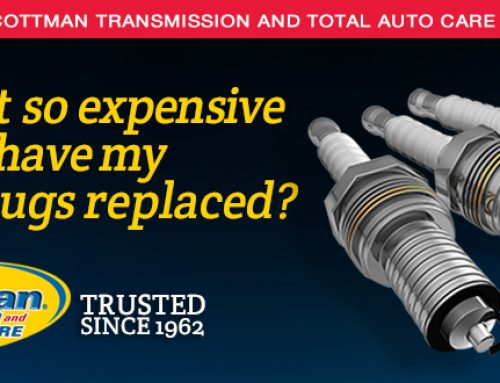 Why is it so Expensive to Have My Spark Plugs Replaced?